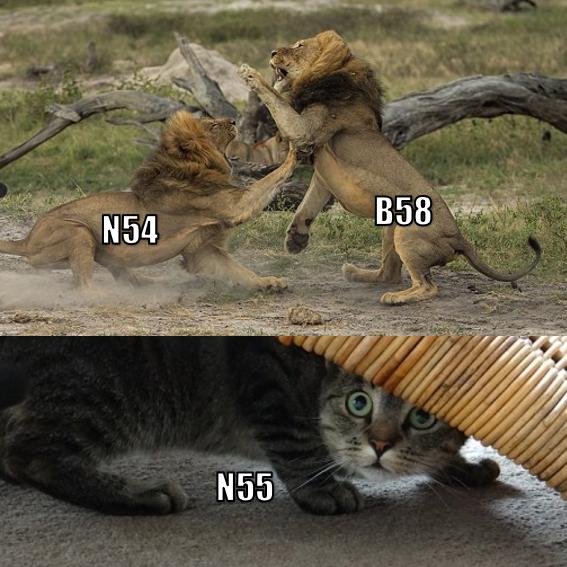 n54 b58 n55.PNG